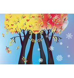 Autumn and winter trees card vector image