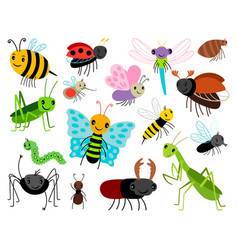 Cartoon insects cute insect collection vector