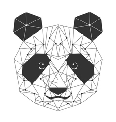 panda bear isolated icon vector image