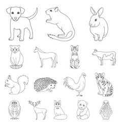 Realistic animals outline icons in set collection vector