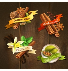 Spices badges set vector image