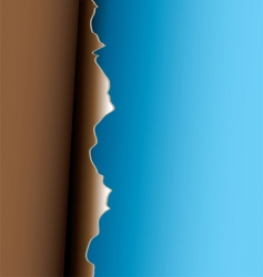 brown peel vector image vector image