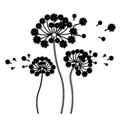 Black silhouette set collection dandelion and fly vector