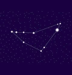 capricornus constellation starry night sky vector image