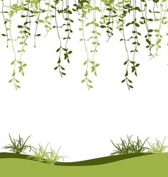 Green climber leaf and grass vector