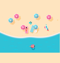 people swim and sunbathe vector image