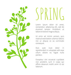 Spring and weed grass on poster with sample text vector