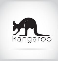 kangaroo on white background wild animals vector image