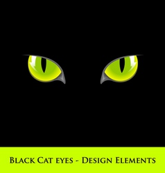 black cat eyes vector image vector image