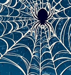 spider and web vector image vector image