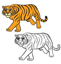 Tiger coloring book vector