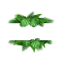 banner with tropical leaves on background vector image