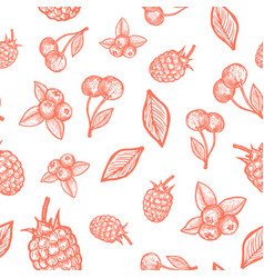 hand drawn raspberry cherry and blueberry harvest vector image