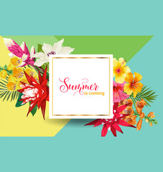 hello summer design with tropical flowers palms vector image