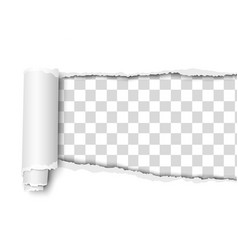 Oblong snatched hole in sheet transparent vector