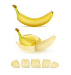 set of yellow bananas sweet tropical fruit vector image