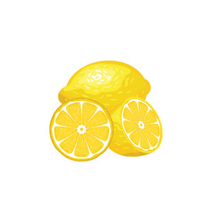 three lemons whole and slices vector image