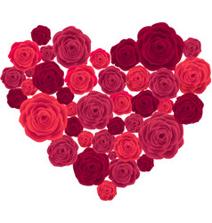 Rose Heart Isolated on White Background vector image