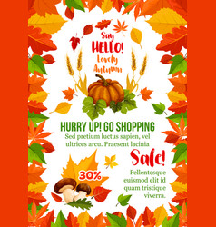 autumn sale poster with fall season leaf frame vector image