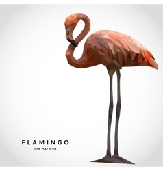 Flamingo low poly style vector