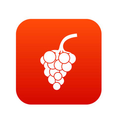grape branch icon digital red vector image
