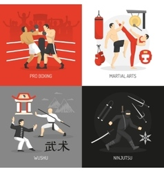 Martial Arts Concept vector image
