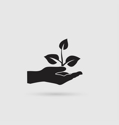 plant in hand icon vector image