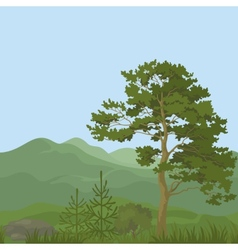 Seamless mountain landscape with trees vector image