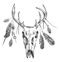 With deer scull and feathers vector