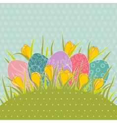 Easter eggs in grass and yellow crocuses vector image