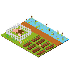 3d design for farm scene with pig and crops vector image