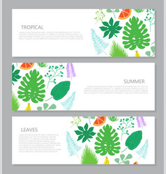 horizontal banner with tropical leaves and fruits vector image