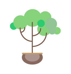 potted plant in a flat style on a white background vector image