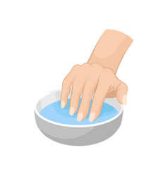 Woman s hand in bowl with water vector