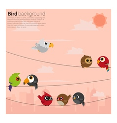 birds on wires background vector image