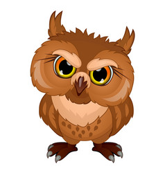 Cartoon owl in evil mood emotional bird character vector