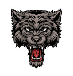 Colorful dangerous scary ferocious wolf head vector