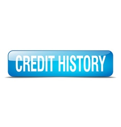 credit history blue square 3d realistic isolated vector image