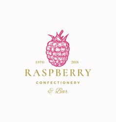 raspberry confectionery bar abstract sign vector image