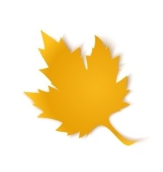 Yellow paper maple leaf vector