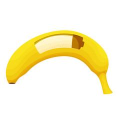 fruit energy icon cartoon style vector image