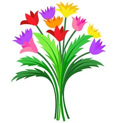 Bunch of colorful flowers vector image