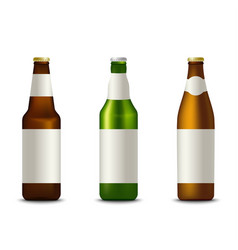 collection different bottles of beer template vector image
