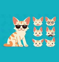cute cat sitting of cool vector image