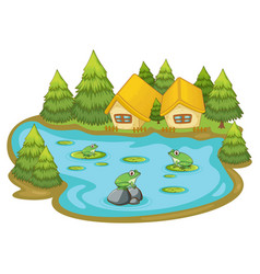 Frogs in pond on white background vector