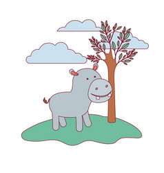 Hippopotamus cartoon in forest next to the trees vector