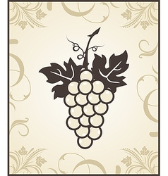 Retro engraving grapevine vector
