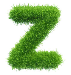 Small grass letter z on white background vector