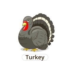 Turkey animal cartoon for children vector image