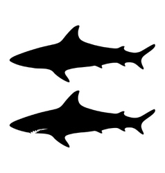 Silhouette shark set vector image vector image
